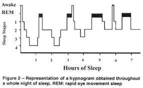 Sleep Cycle 2